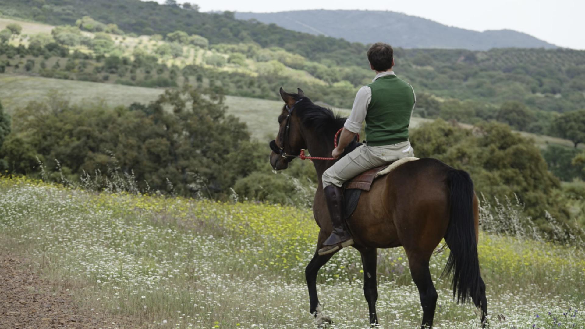 Enrique Zunzunegui y el porqué de los caballos, de la vida y de Dios